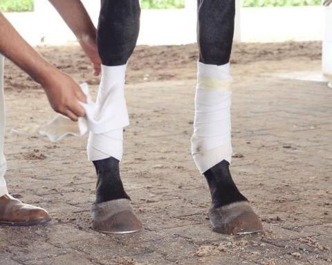 BandagesTrainingSSF