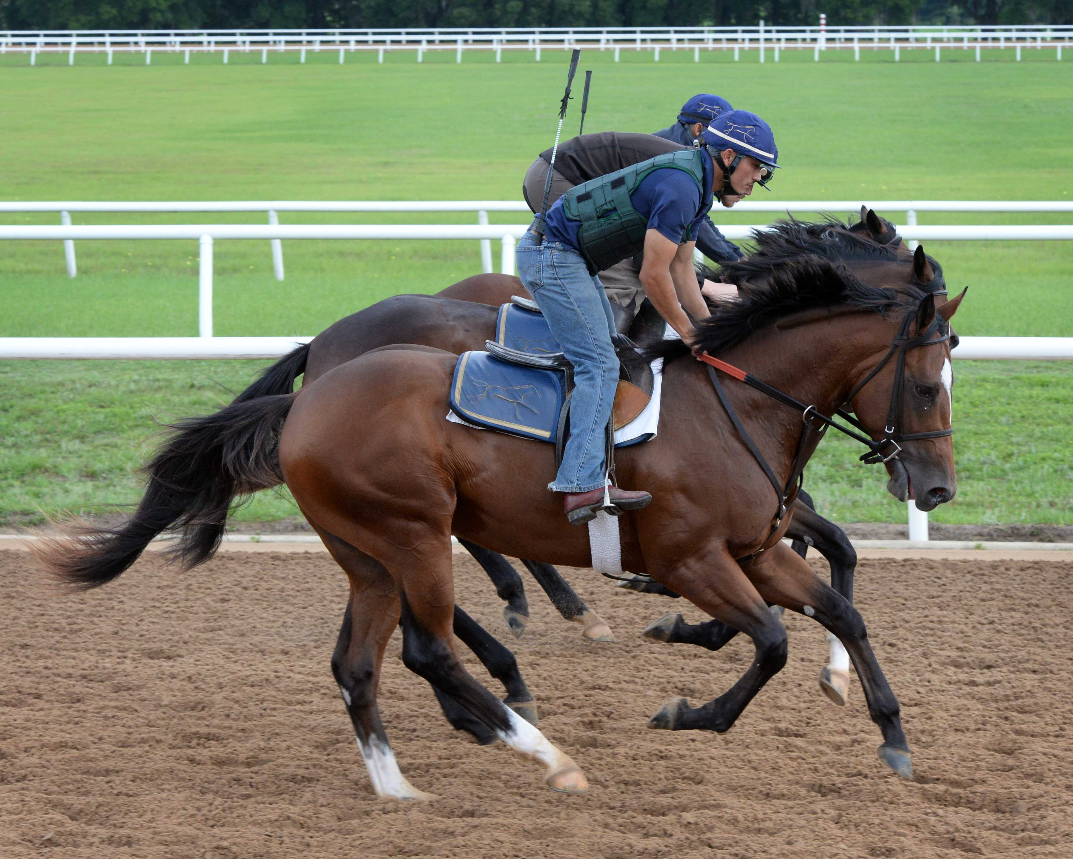 Two-Year-Olds training, Stonestreet Training Center 2015, 2 year old